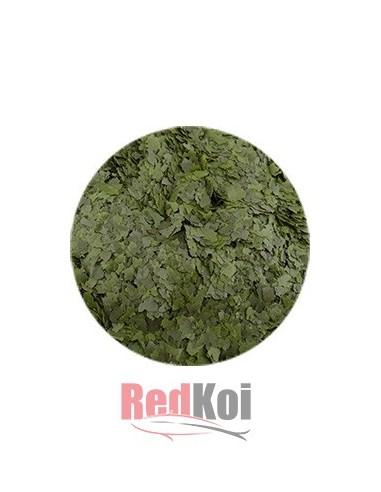 Alimento Copos Spirulina 10% tarrina 500ml