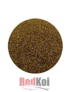 Alimento larvas mosca de agua FD tarrina 500ml
