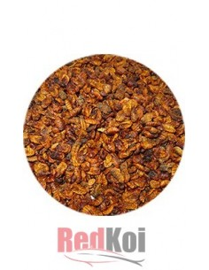 Alimento Pulpa Gusano  Seda Prem FD tarrina 500ml